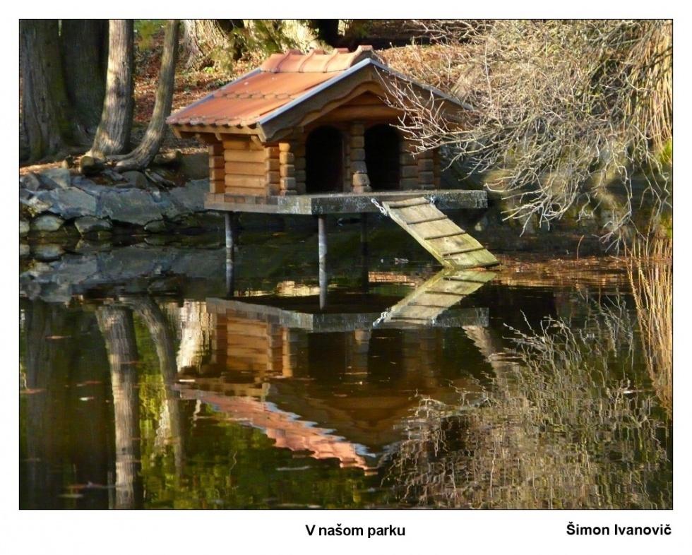 Ivanovič-Šimon-V-našom-parku-II
