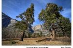 Cepcek-Yosemite-Falls