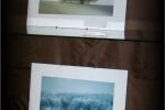 fotografie-z-prirody-5