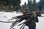 11_cigani s drevom v NP Slovensky raj - Jozef Pazitny