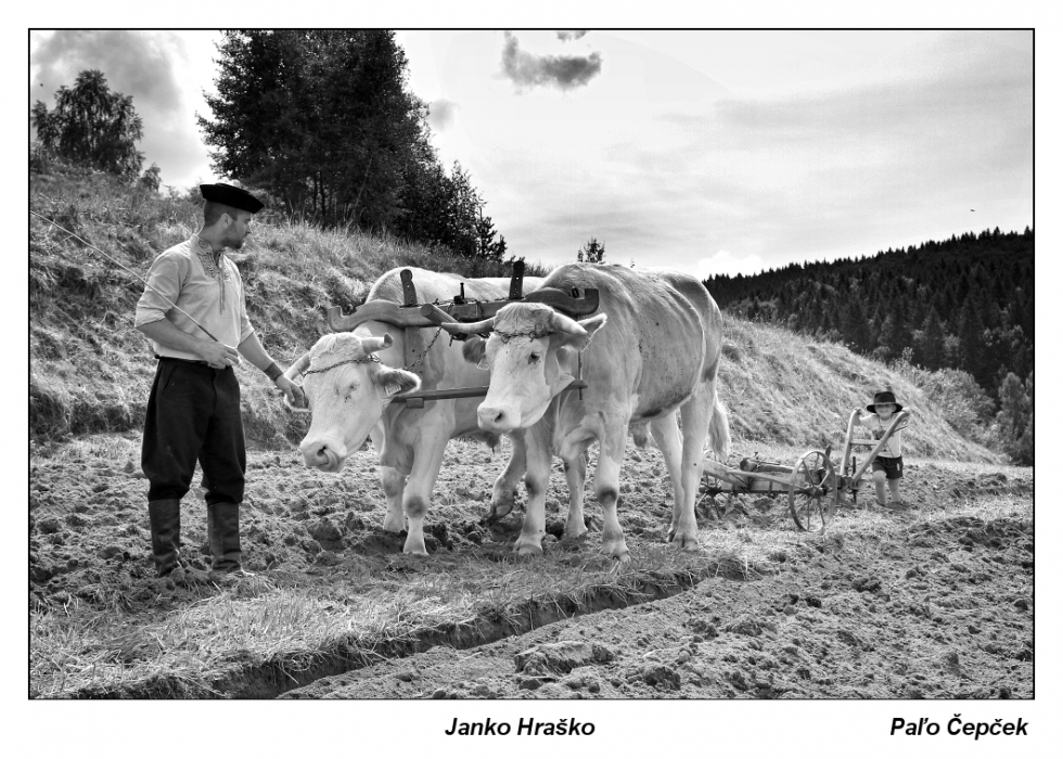 Cepcek-Janko-Hrasko