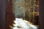 richard-sladek-cesta-parkom